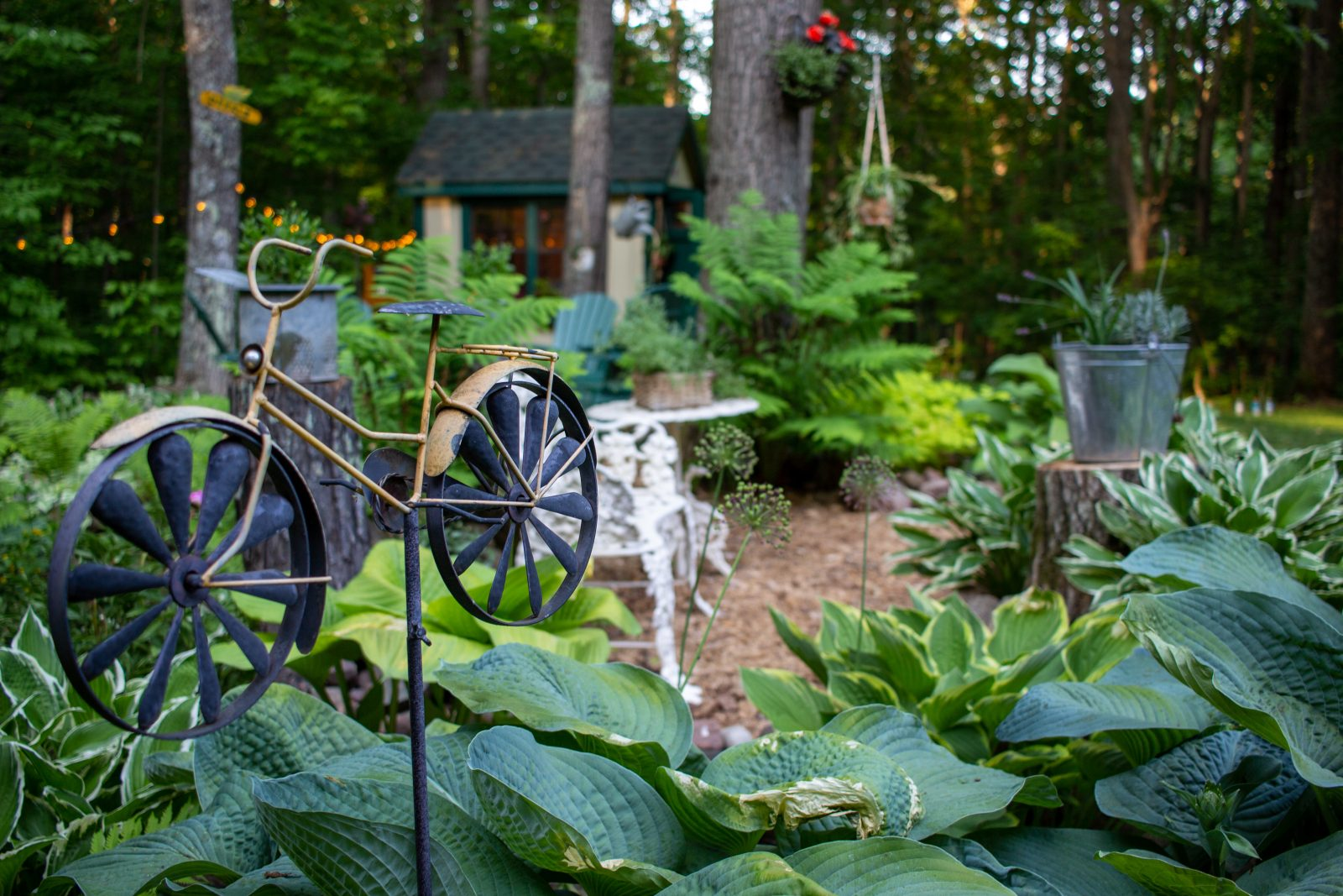 garden she shed ideas for upper midwest