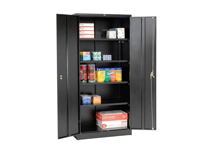 portable cabinet for storage shed organization